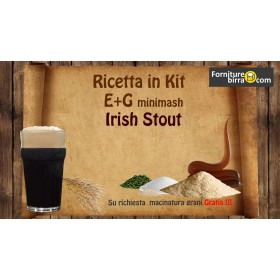 Ricetta in kit E+G Irish Stout